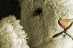 White-Rabbit-red-rabbit-fringearts-philadelphia-nassim-soleimanpour