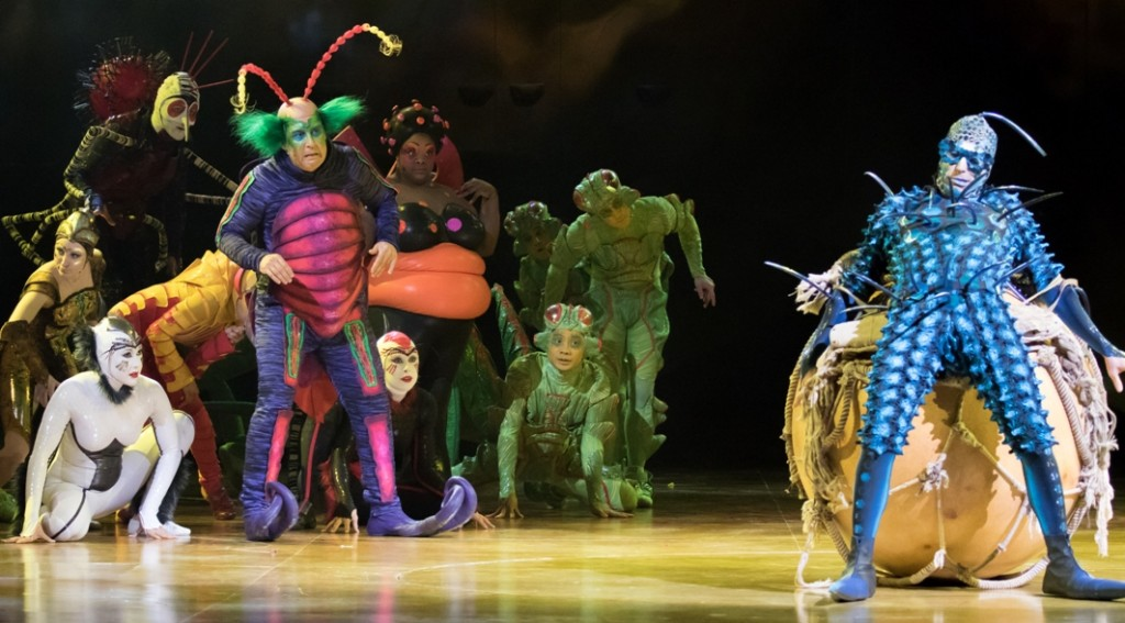 Cirque du Soleil's OVO features an ensemble of acrobatic insects (Photo credit: Courtesy of Cirque du Soleil)