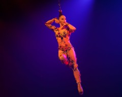 An Aerialist Brazilian: Danila Bim discusses her work with Cirque du Soleil's VOLTA