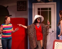 BETTY'S SUMMER VACATION (IRC): A terribly funny nightmare of a beach trip