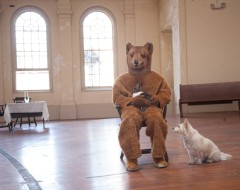 LET THE DOG SEE THE RABBIT (LRS): A conceptual look at humans looking at animals